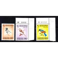 Фауна. Птицы. Иордания. 1970. 3 марки. Полная серия. Michel N 790-792. (50,0 е)
