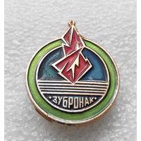 Пионерский лагерь Зубренок БССР #0500-OP12