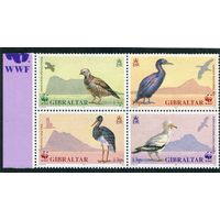 Гибралтар. Охрана природы, птицы, квартблок