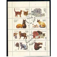 Оман 1973г. кошки. 8м. малый лист