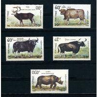 Лаос 1990г. животные, 5м.