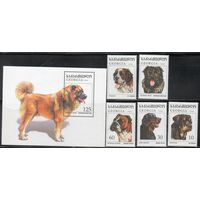 Фауна Собаки Грузия 1996 год полная чистая серия из 5 марок, 1 блока и 1 малого листа