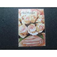Австралия 2005 розы