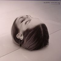 The National - Trouble Will Find Me  // 2LP new