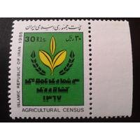 Иран 1988 растение