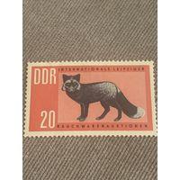 ГДР. Чёрная лисица