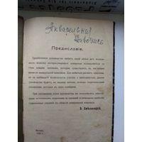 Книга 1908 года акварельная живопись. Отличный подарок художнику!