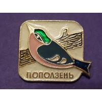 Значок СССР. Поползень