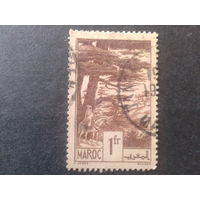 Марокко 1939 деревья, всадник