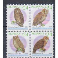 [907] Филиппины 2010. Фауна.Птицы.Совы.