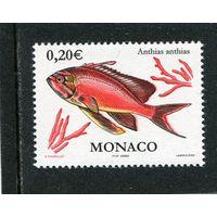 Монако. Красная рыба