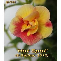 "Ахименес ""'Hot Spot'  (S.Saliba, 2012)"