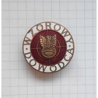 """Польша. Знак """"Отличный командир"""" (бронза), 3 степень."""