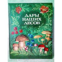 Дары наших лесов. В. Саутин, В. Фомина, З. Валова