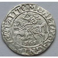 Полугрош 1561 года