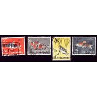 4 марки 1962 год Сингапур Рыба 55-57,59
