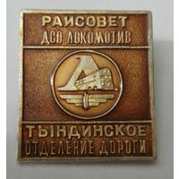 ДСО локомотив. Тындинское отделение дороги.