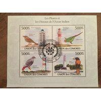 Коморские острова 2010. Птицы (блок)