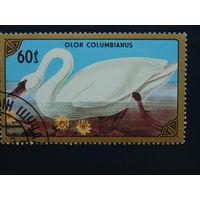 Монголия 1986г. Птицы.