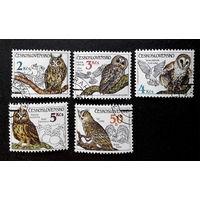 Чехословакия 1986 г. Совы. Птицы. Фауна, полная серия из 5 марок #0187-Ф1P43