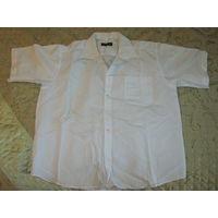 Рубашка мужская 45/46-182/184 с коротким рукавом