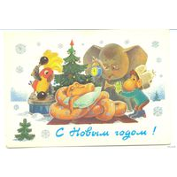 ДМПК Зарубин Новый год прошла почту