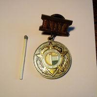Медаль Южная группа войск СССР 1956-1991 латунь