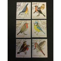 Певчие птицы. ГДР. 1979, серия 6 марок