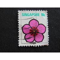 Сингапур. Цветок.