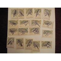 Спичечные этикетки:Певчие птицы.Барнаул-56