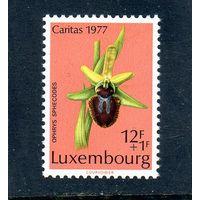 Люксембург.Ми-960.Растения. Орхидея Паук. Серия: Охраняемые растения.1977