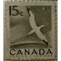 1954 National Wildlife Week - 284 Morus bassanus (Канада)
