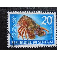 Сенегал 1968 г. Фауна.