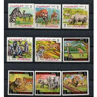 Фуджейра - 1969 - Дикие животные - [Mi. 302-310] - полная серия - 9 марок. MNH.