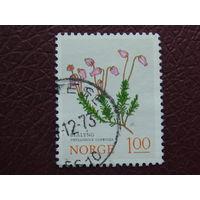 Норвегия. Флора. 1973г.
