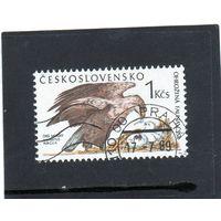 Чехословакия.Ми-3006. Белохвостый орел (Haliaeetus albicilla). Серия: Охрана природы. 1989.