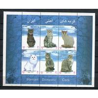 Иран - 2004 - Кошки - [Mi. bl. 41] - 1 блок. MNH.