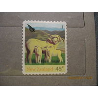 Новая Зеландия. Овцы. 2005г.