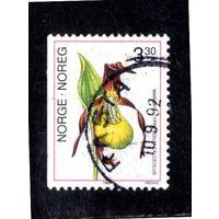 Норвегия.Ми-1088.Венерин башмачок. Orchid (башмачок настоящий). Серия: Орхидеи. 1992.