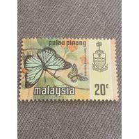 Малайзия. Бабочки. Valeria lutescens