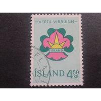 Исландия 1964 скауты