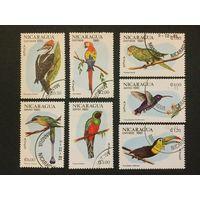 Птицы. Никарагуа,1981, 2 серии 7 марок