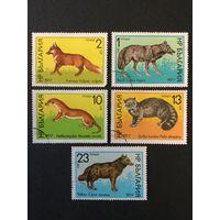 Дикие животные. Болгария. 1977, серия 5 марок